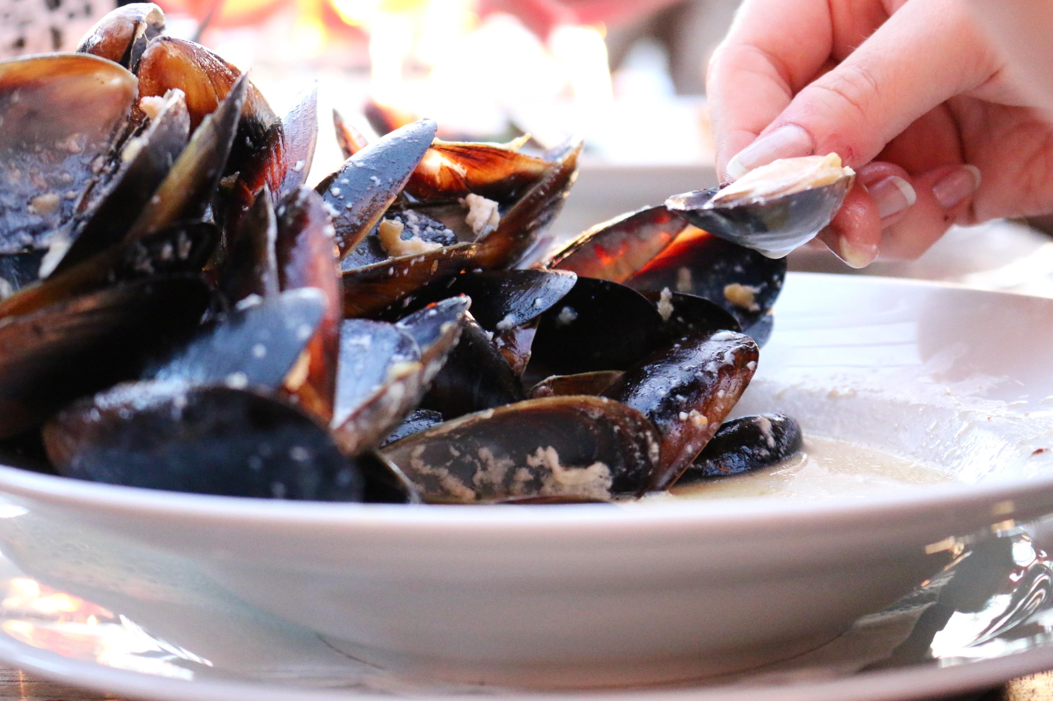 Strandhusets musslor