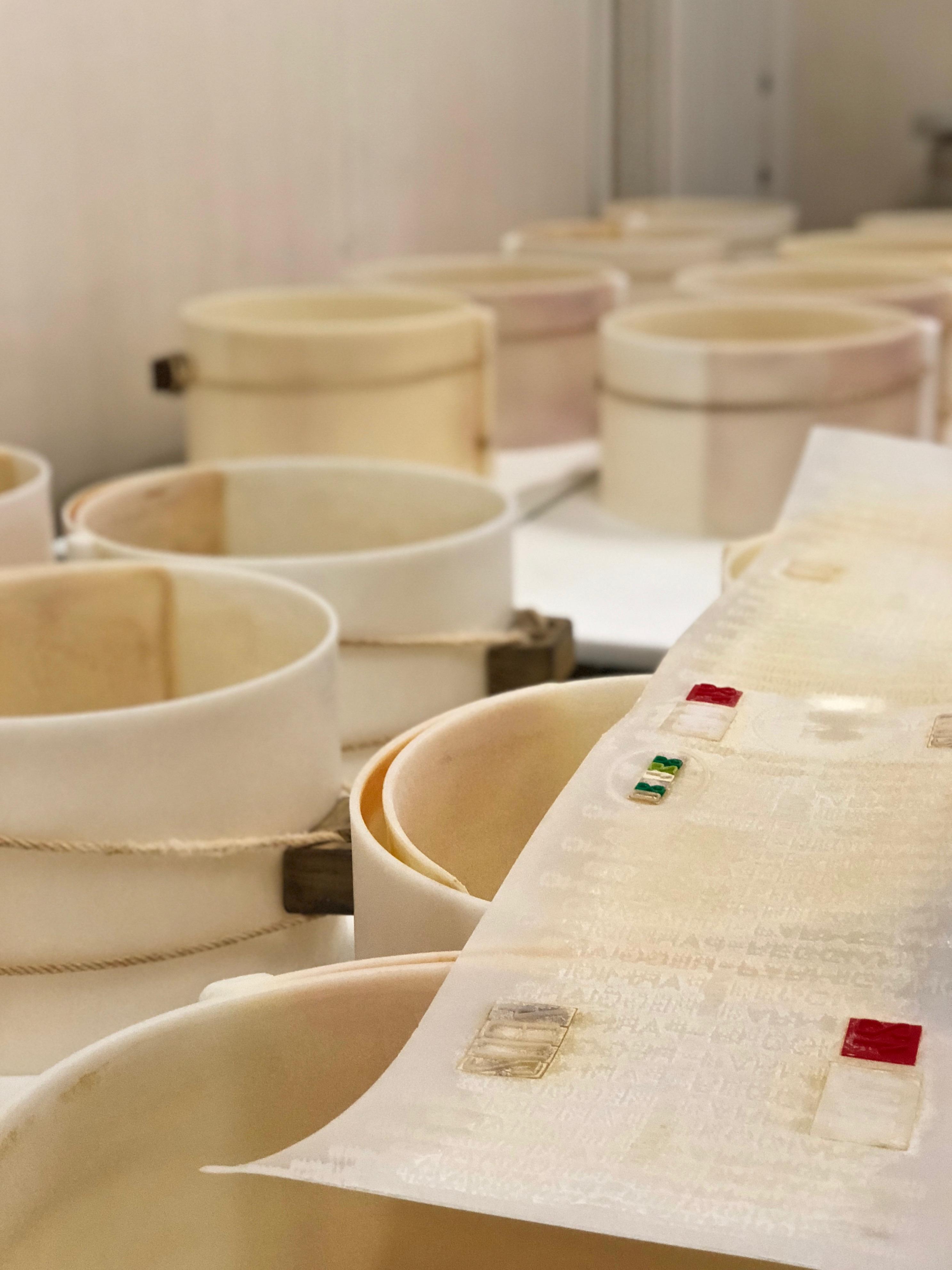 Parmigiano Reggiano plastkrage